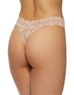 Hanky Panky Cross-Dyed Original Rise Thong in Taupe/Vanilla, Back View